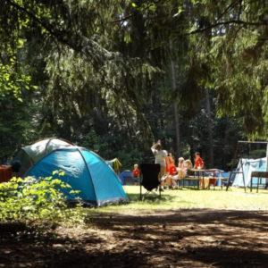 Si temes el contagio de piojos en el campamento de verano, te damos unas sencillas pautas