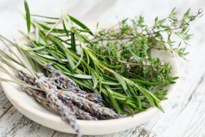 Lavanda, romero, eucalipto y algunos cítricos son aromas naturales que actúan como repelentes ante los piojos